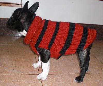 Abrigo de perro a crochet tejido en dos agujas
